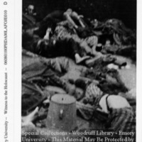 Corpses of prisoners  [Dachau]