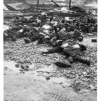 A pile of corpses of prisoners near a barbed wire fence at Landsberg (2)