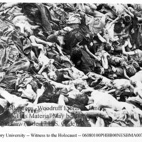 Close-up of a pile of corpses of prisoners [Bergen-Belsen]