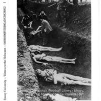 Liberators supervise townspeople burying corpses of prisoners  [Bergen-Belsen]