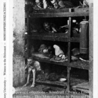 """""""A section of the hospital cribs""""  [Buchenwald]"""