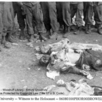 A group of liberators looks at the corpse of a naked, emaciated prisoner laid next to the corpses of two SS guards (2)  [Ohrdruf]