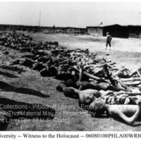 Rows of corpses of prisoners at Landsberg (1)