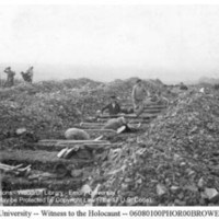 Townspeople dig individual graves for corpses of prisoners  [Ohrdruf]