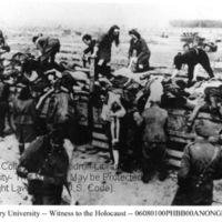Civilians unload corpses of prisoners from trucks  [Bergen-Belsen]