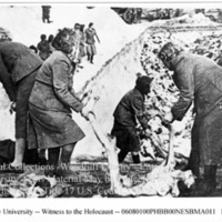 Female camp guards bury corpses of prisoners in a mass grave  [Bergen-Belsen]