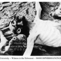 Close up of two emaciated, naked corpses  [Bergen-Belsen]