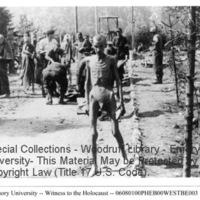 Survivors and liberators walk along a road at Ebensee