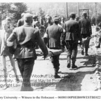 Liberators and survivors on a road at Ebensee