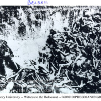 Corpses of prisoners in a pit at Bergen-Belsen